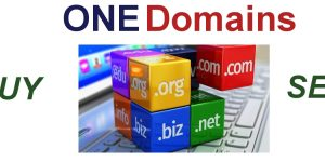 ONE Domains